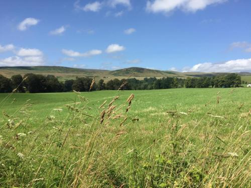 Sunny Perthshire countryside with gentle hills and blue sky