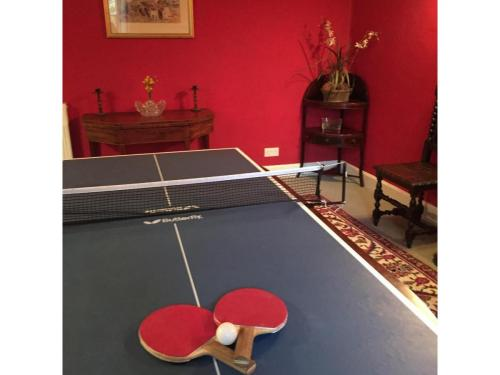 Table tennis table on top of dining room table
